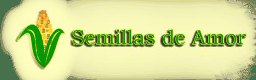 semillas de amor orphanage guatemala